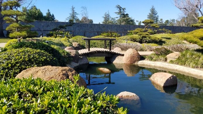 Japanese garden at the donald c tillman water reclamation for Typical japanese garden plants