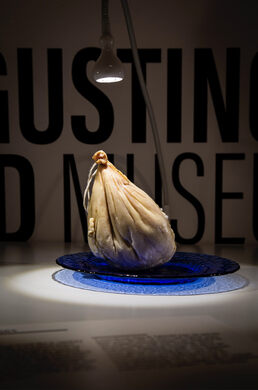 Disgusting Food Museum – Malmö, Sweden - Gastro Obscura