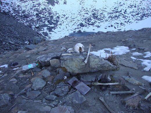 18d2c7e1c6e7 Skeleton Lake of Roopkund, India – Chamoli, India - Atlas Obscura