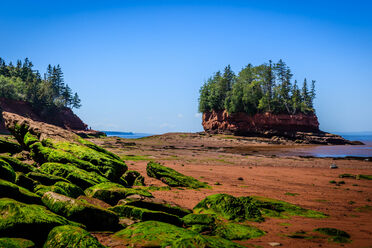 29 Cool and Unusual Things to Do in Nova Scotia - Atlas Obscura