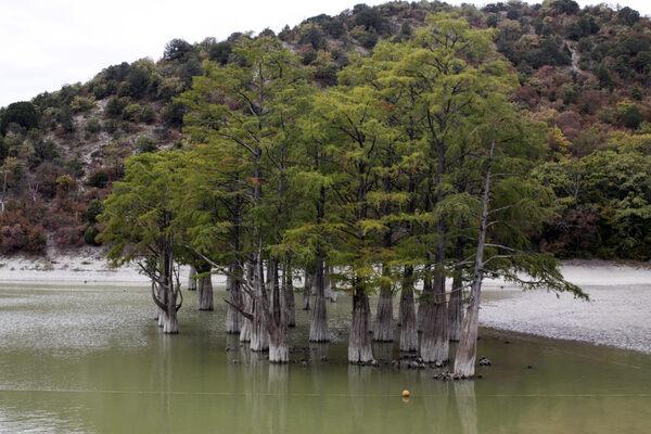 Sukko Cypress Lake in Krai, Russia