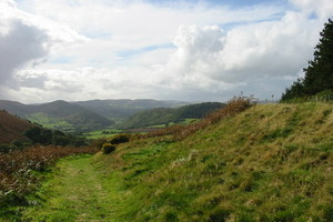 Offa's Dyke, near Knill, Herefordshire, looking west