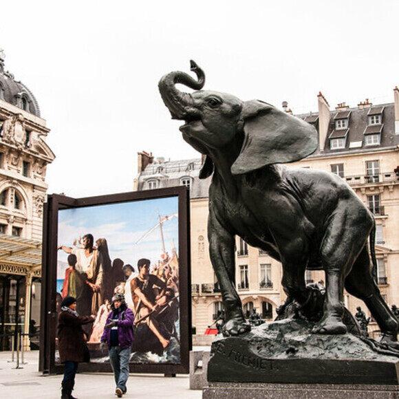 Jeune Elephant Pris Au Piege Young Elephant Caught In A Trap Paris France Atlas Obscura