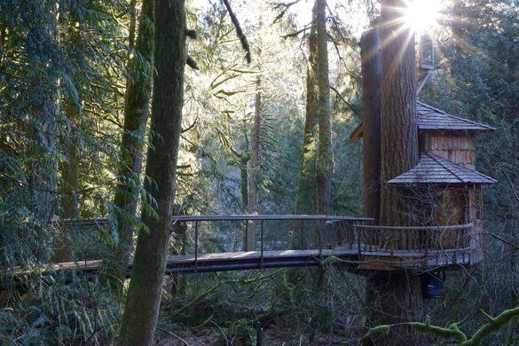 Treehouse Point Issaquah Washington Atlas Obscura