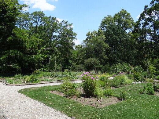 Bartramu0027s Garden. Esther Westerveld/CC BY 2.0