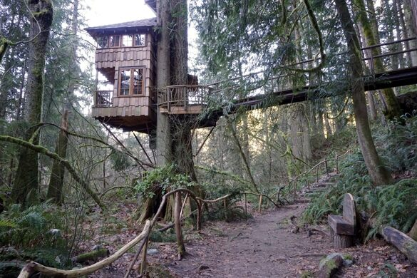 Treehouse Point – Issaquah, Washington - Atlas Obscura