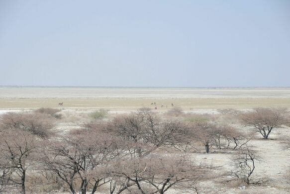 Makgadikgadi Salt Pans – Tutume, Botswana - Atlas Obscura