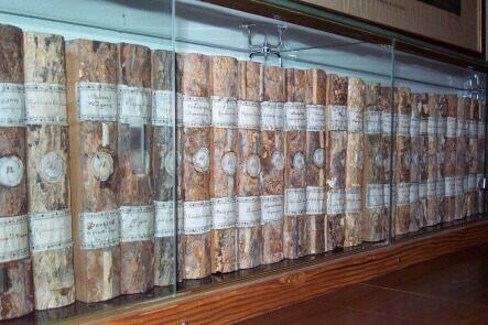 Wooden books of padova university san vito di cadore italy httptesafunipdsanvitowoodbook malvernweather Image collections