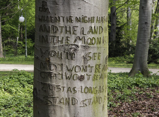 Stand By Me' Tree – Berlin, Germany - Atlas Obscura