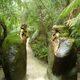 Entryway to Sanctuary