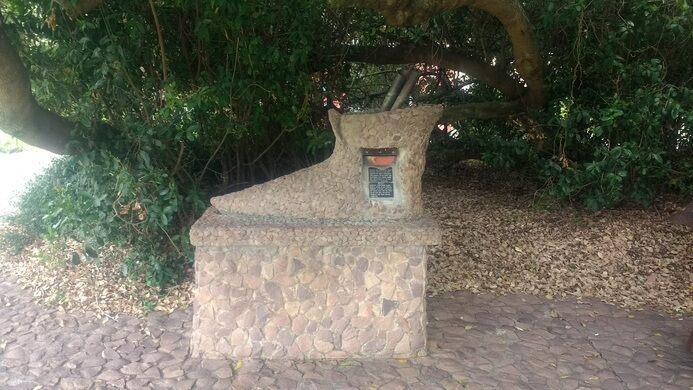office tree. The Mailbox Underneath Post Office Tree Adamrodman Atlas Obscura User