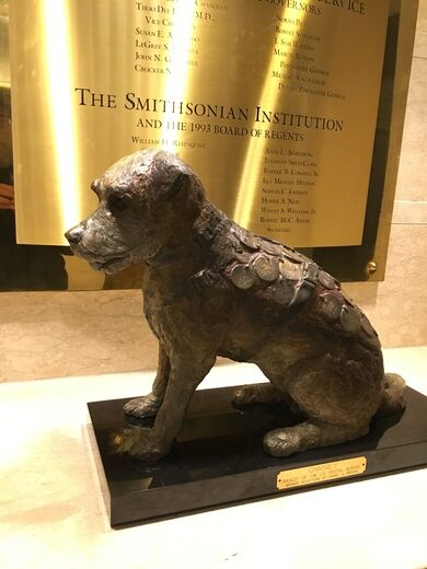 Image result for owney the bronze statue