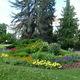 Flowers in summer bloom