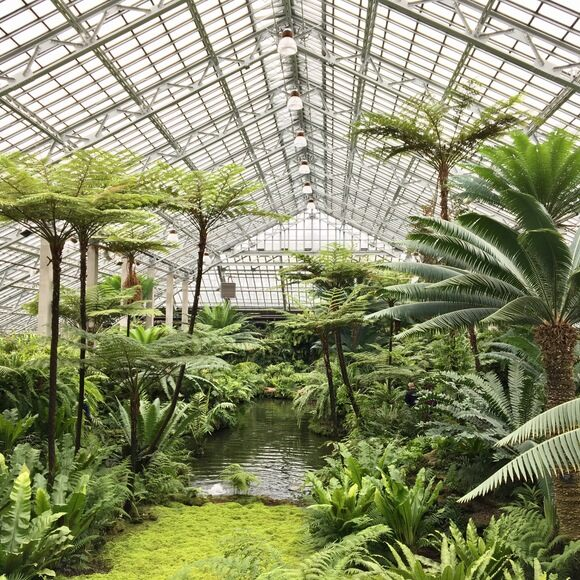 Garfield Park Conservatory Chicago Illinois Atlas Obscura