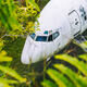 Abandoned aircraft between leaves, Bali