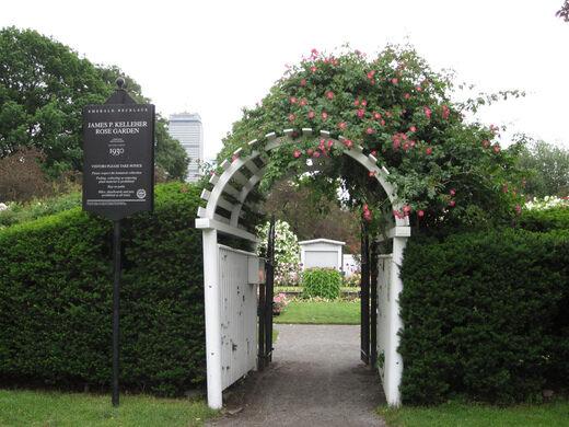 Kelleher rose garden u2013 boston massachusetts atlas obscura