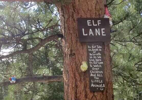 Gnome Road – Red Feather Lakes, Colorado - Atlas Obscura