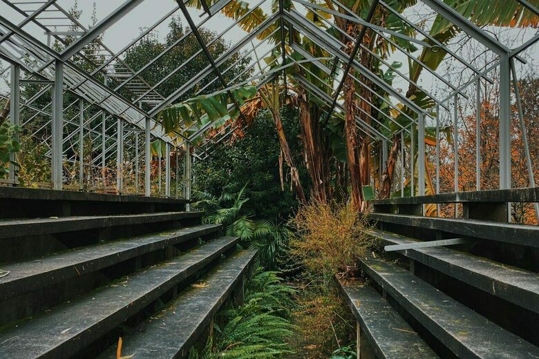 Jardim Botânico do Porto (Porto Botanical Garden)