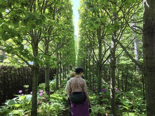 Les jardins de quatre vents la malbaie qu bec atlas for Jardin 4 vents