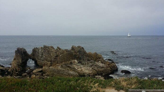 121 best I heart California! images on Pinterest | Pacific ... |Rock Pacific Grove California