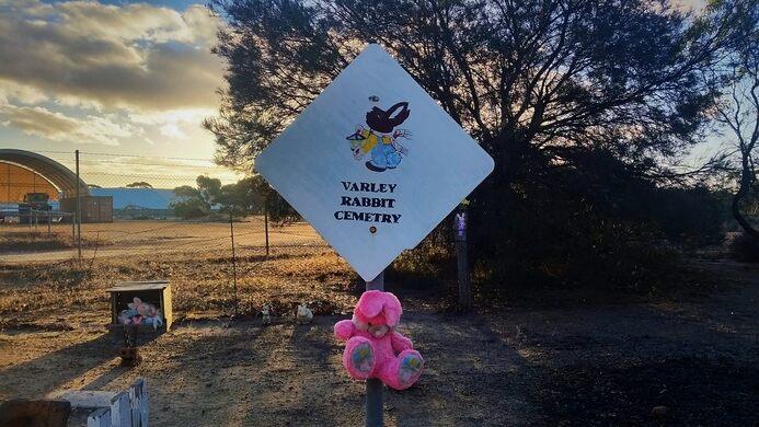 Rabbit Cemetery