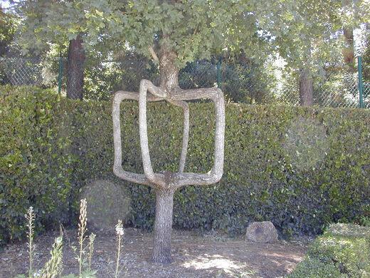 Revolving Door  Tree //.flickr.com/photos/disneyite/117. & Gilroy Gardens u2013 Gilroy California - Atlas Obscura pezcame.com