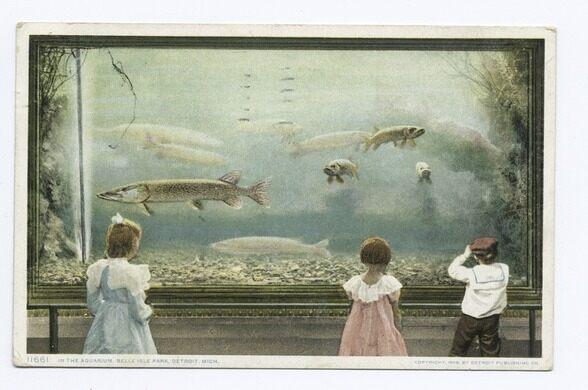 Belle Isle Aquarium – Detroit, Michigan - Atlas Obscura
