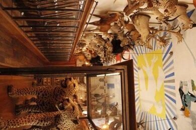 mus e de la chasse et de la nature museum of hunting and nature paris france atlas obscura. Black Bedroom Furniture Sets. Home Design Ideas