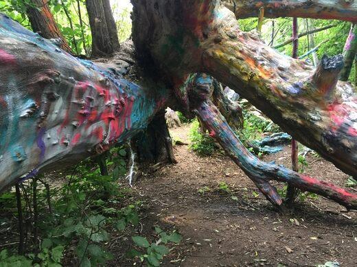 6d4ab8565fb The Hippie Tree – Traverse City