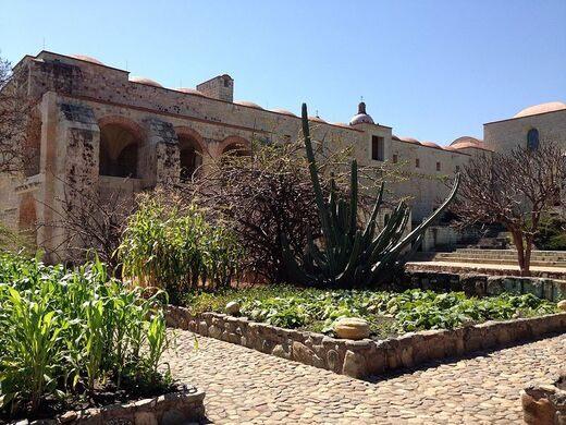 jardín etnobotánico de oaxaca ethnobotanical garden of oaxaca