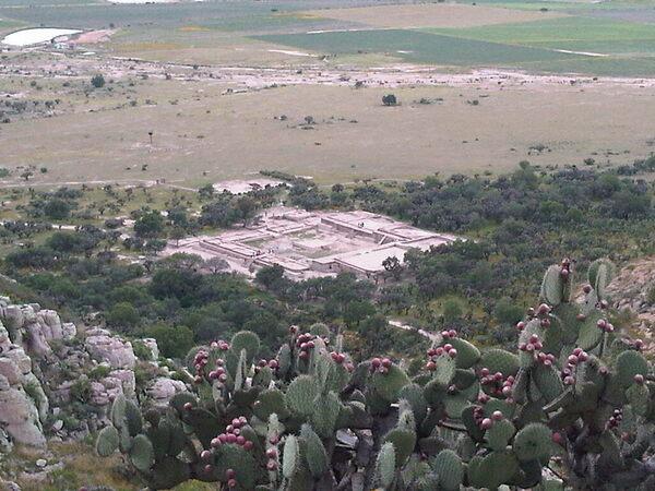 El Cóporo in San José del Torreón, Mexico