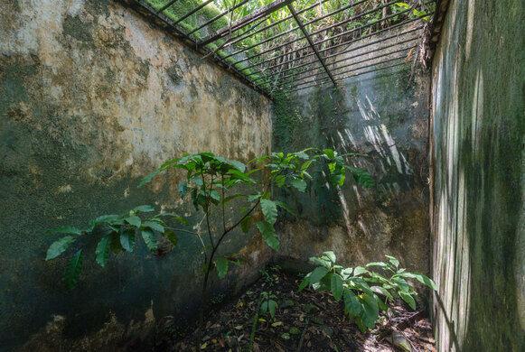 Devils Island French Guiana Atlas Obscura