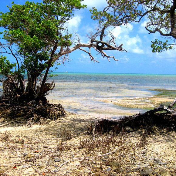 Geiger Key Abandoned Beach