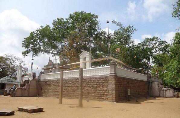 Jaya Sri Maha Bodhi – Anuradhapura, Sri Lanka - Atlas Obscura