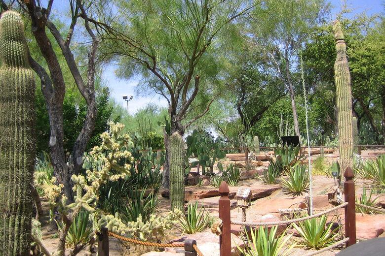 Ethel M Botanical Cactus Garden Henderson Nevada Atlas Obscura