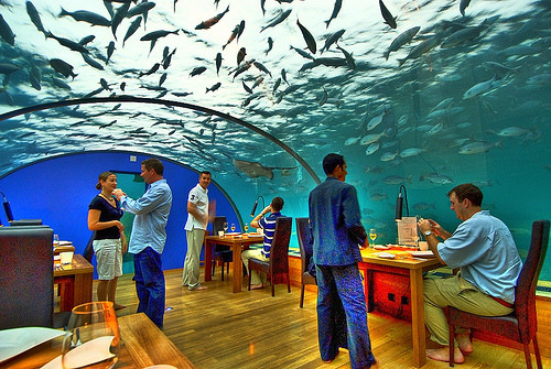ithaa undersea restaurant addu city maldives atlas. Black Bedroom Furniture Sets. Home Design Ideas