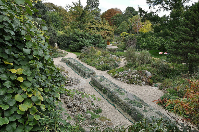 Jardin Alpin (Alpine Garden)
