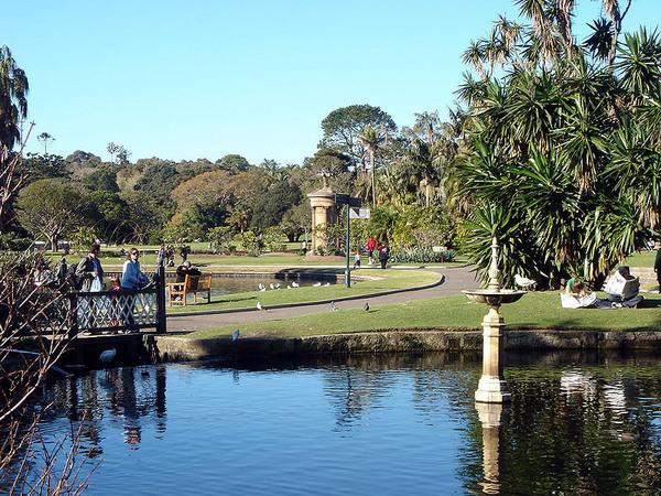 royal botanic gardens  sydney  u2013 sydney  australia