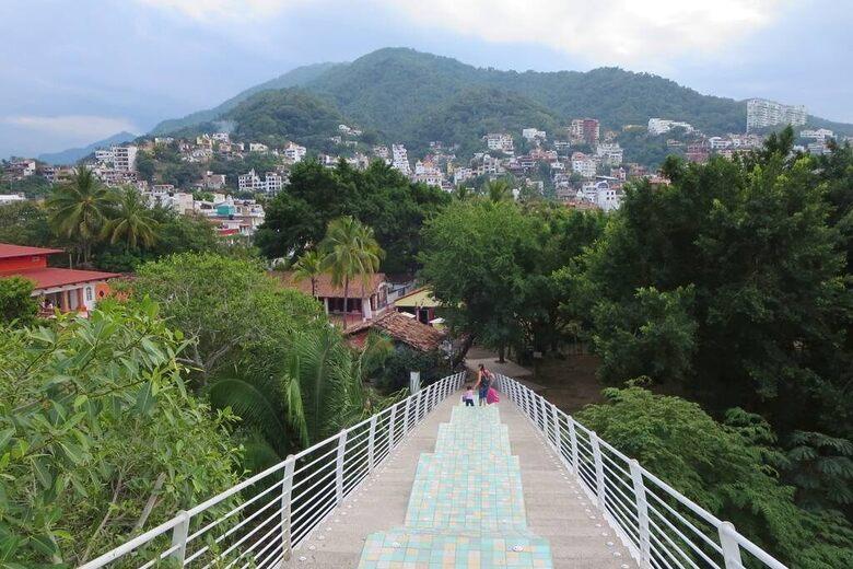 Iguana Bridge