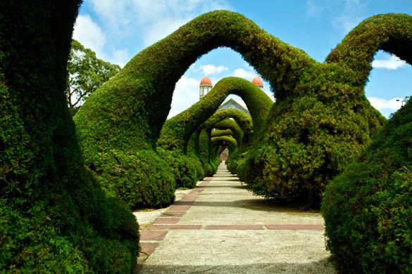 Parque Francisco Alvarado Zarcero Costa Rica Atlas