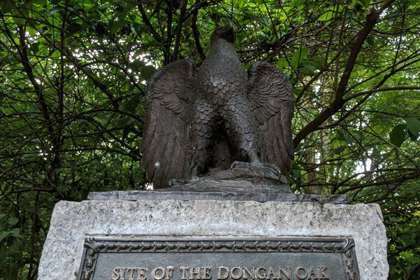 Site of the Dongan Oak in Brooklyn, New York