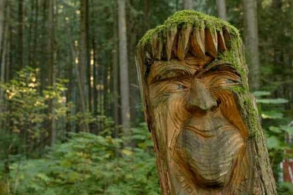 The Enchanted Forest – Malakwa, British Columbia - Atlas ... - photo#39
