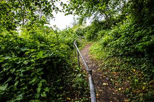 Goonie Trails