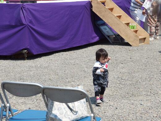 Naki Sumo Baby Crying Contest – Tokyo, Japan - Atlas Obscura