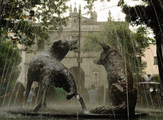 Fuente de los Coyotes