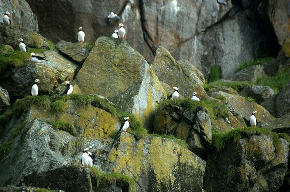 Diomede Islands Time Difference