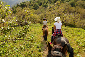 Riding on horseback through wild apple groves outside Almaty.