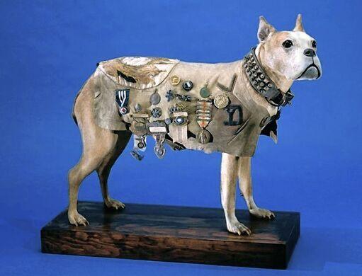 2. Owney—The U.S. Postal Pup