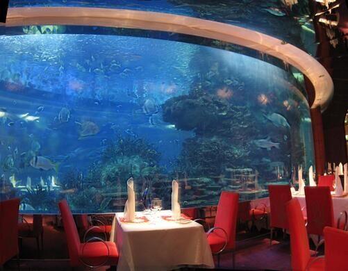 Aquarium Restaurant Gryffindoor Public Domain