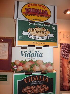 Vidalia Onion Museum – Vidalia, Georgia - Gastro Obscura